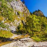 Image: Homole Gorge (the Pieniny)